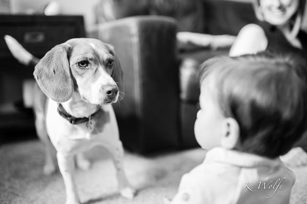 And Beagle!
