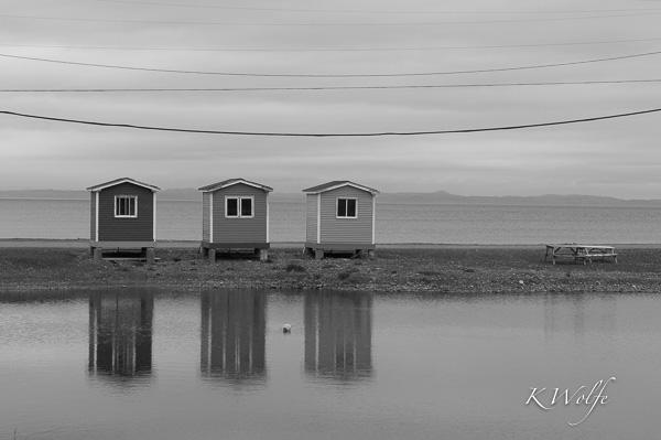 0608-Newfoundland-222