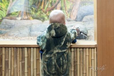 0227-Zoo-26