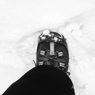 0226-hike-001
