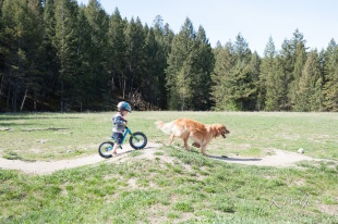 0508-pumptrack-7