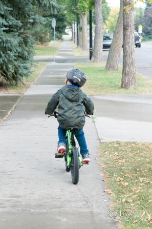 0909-bikes-1