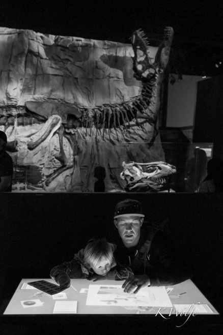 1007-dinosaurs-13