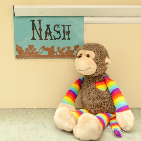 1018-RMH-Nash-38