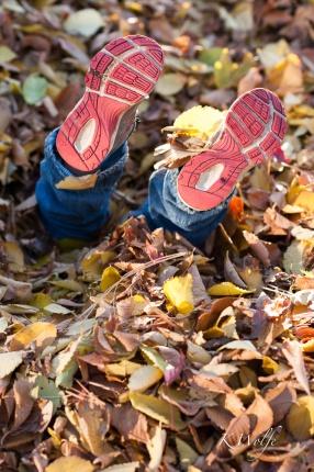 1021-leaves-9