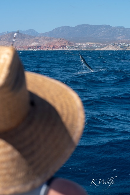 0223-Cabo-26