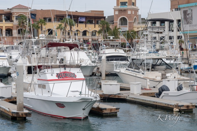 0223-Cabo-48